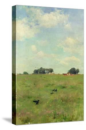 Field with Trees and Sky, or Landscape with Crows