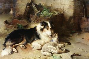 Motherless: the Shepherd's Pet, 1897 by Walter Hunt