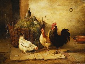 Poultry and Pigeons in an Interior, 1881 by Walter Hunt