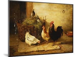 Poultry and Pigeons in an Interior by Walter Hunt