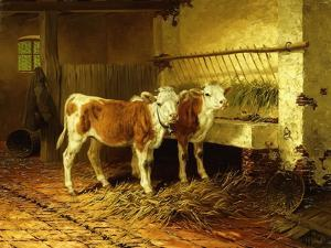 Two Calves in a Barn by Walter Hunt