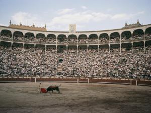A Bullfight in Madrid by Walter Meayers Edwards