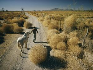 A Man Leads a Horse Down a Dirt Road by Walter Meayers Edwards