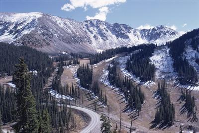 Erosion Prevention, Contoured Bands of Trees Unfelled, Also Acting as Fire Break, Colorado