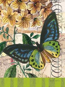 Bountiful Butterfly 2 by Walter Robertson