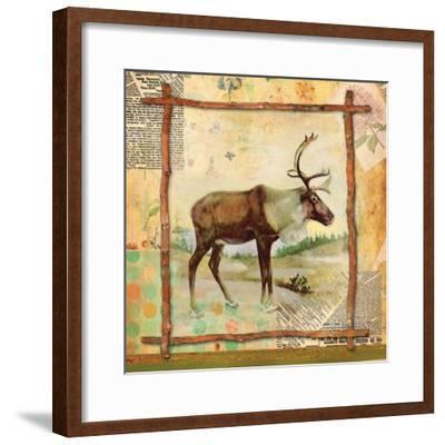 Elk Nature