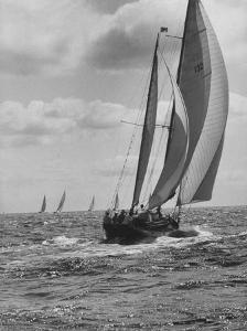 Friday Race Underway from Newport, Rhode Island to Vineyard Haven, Massachusetts by Walter Sanders