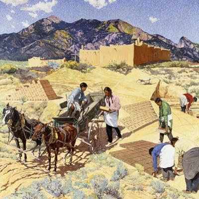 Builders in the Desert
