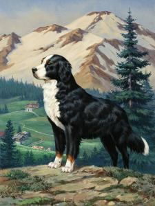 Bernese Mountain Dog Stands on a Hill Overlooking a Rural Valley by Walter Weber
