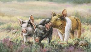And Friends by Wanda Mumm