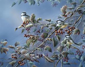 Autumn Splendor by Wanda Mumm