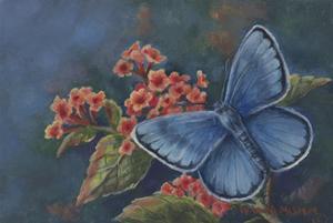 Blue Butterfly by Wanda Mumm