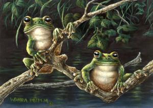 Frogs by Wanda Mumm