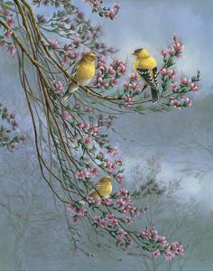 Gold Finches by Wanda Mumm
