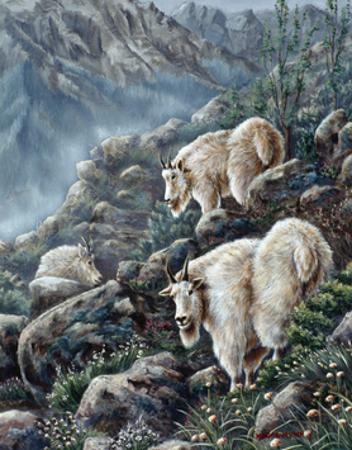 Mountain Voyager by Wanda Mumm