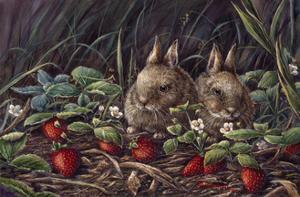 Strawberry Bunnies by Wanda Mumm