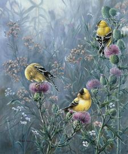 Summer Gold by Wanda Mumm