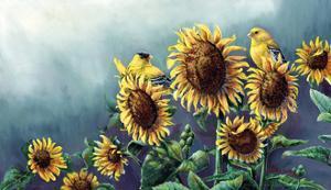 Sun and Gold by Wanda Mumm