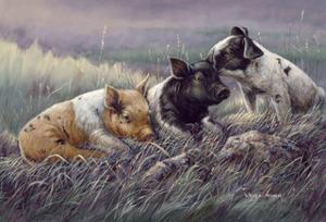 Three Little Pigs by Wanda Mumm