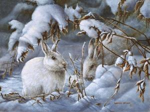 Winter Hares by Wanda Mumm