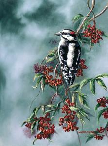 Woodpecker with Red Berries by Wanda Mumm