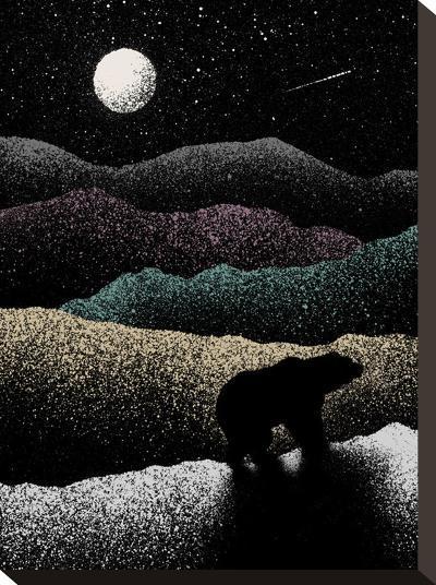 Wandering Bear-Florent Bodart-Stretched Canvas Print