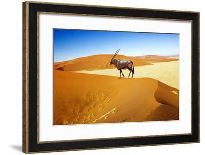 Wandering Dune of Sossuvlei in Namibia with Oryx Walking on It-mezzotint-Framed Photographic Print