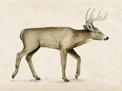 Wandering IV-Grace Popp-Art Print