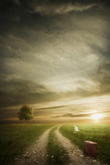 Wandering Road-Daniela Owergoor-Photographic Print