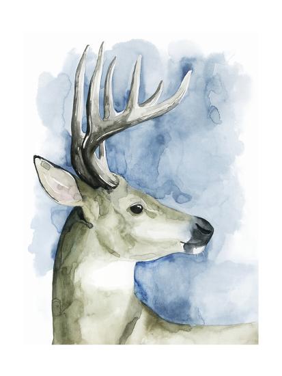 Wandering Stag II-Grace Popp-Art Print