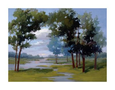 Wandering Water-Vicki Mcmurry-Giclee Print