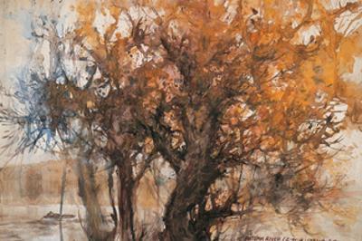 Autumn River by Wanqi Zhang