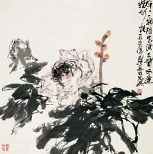 Chinese Peony in Spring by Wanqi Zhang