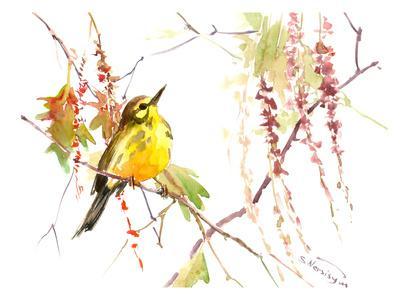 https://imgc.artprintimages.com/img/print/warbler-in-spring_u-l-f81pqk0.jpg?p=0