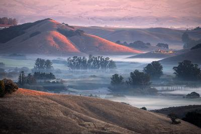 Warm Dreamy Light and Country Hills, Fog and Light, Sonoma-Vincent James-Photographic Print
