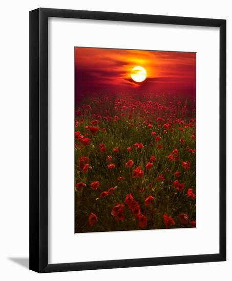 Warm Sunset-Marco Carmassi-Framed Photographic Print