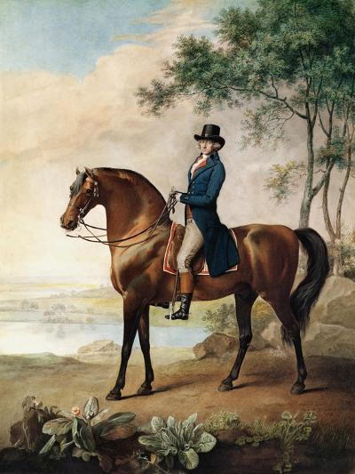 Warren Hastings Esq. on His Arabian Horse, after a Painting by George Stubbs, 1796 (1724-1806)-George Townley Stubbs-Giclee Print