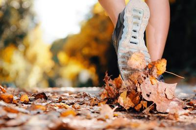 Close up of Feet of a Runner Running in Autumn Leaves Training for Marathon and Fitness Healthy Lif