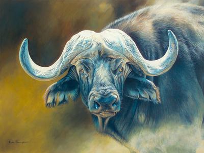 Homework help cape buffalo