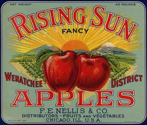 Warshaw Collection of Business Americana Food; Fruit Crate Labels, F.E. Nellis & Co.