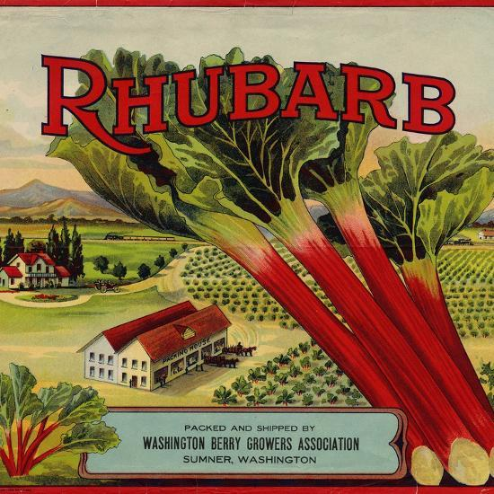 Warshaw Collection of Business Americana Food; Fruit Crate Labels, Washington Berry Growers--Art Print