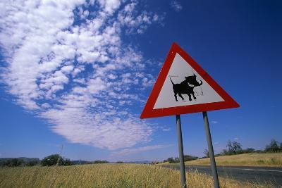 Warthog Crossing Sign-Paul Souders-Photographic Print