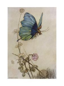 He Rides on the Back of a Butterfly by Warwick Goble
