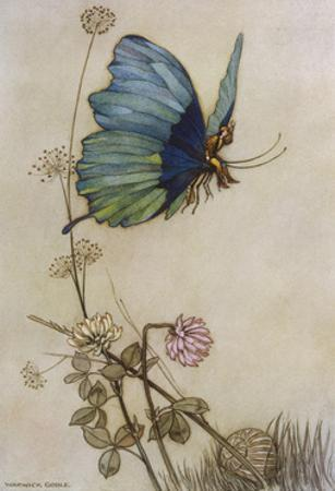 He Rides on the Back of a Butterfly