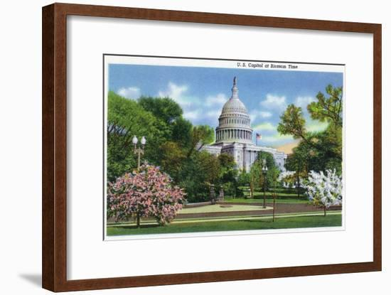 Washington DC, Exterior View of the US Capitol Building at Blossom Time-Lantern Press-Framed Art Print