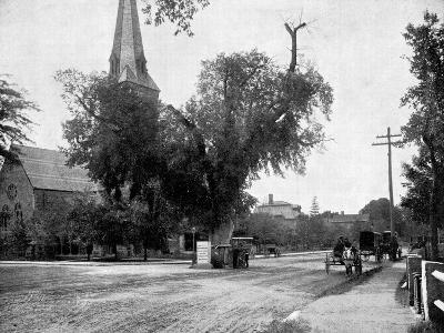 Washington Elm and Memorial Stone, Cambridge, Massachusetts, USA, 1893-John L Stoddard-Giclee Print