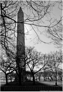Washington Monument Black and White DC