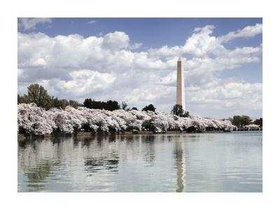 https://imgc.artprintimages.com/img/print/washington-monument-washington-d-c-vintage-variant_u-l-f8v9ig0.jpg?p=0