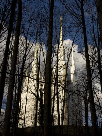 https://imgc.artprintimages.com/img/print/washington-mormon-temple-rises-dreamlike-behind-the-tree-line_u-l-p8e8dd0.jpg?p=0