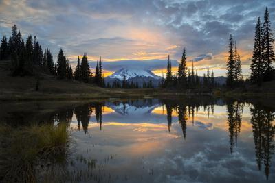https://imgc.artprintimages.com/img/print/washington-mt-rainier-national-park_u-l-q12t06d0.jpg?p=0
